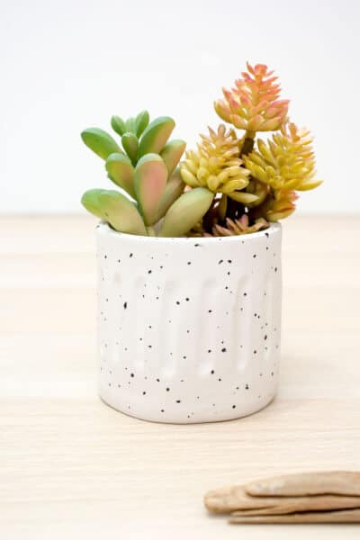 clay planter