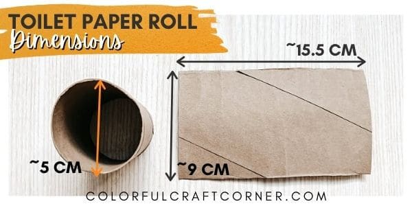 toilet paper tube dimensions